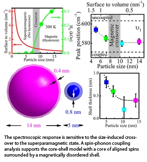 Spectroscopic Signature of the Superparamagnetic Transition and Surface Spin Disorder in CoFe2O4 Nanoparticles
